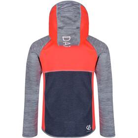 Dare 2b Curate Lapset takki , harmaa/punainen